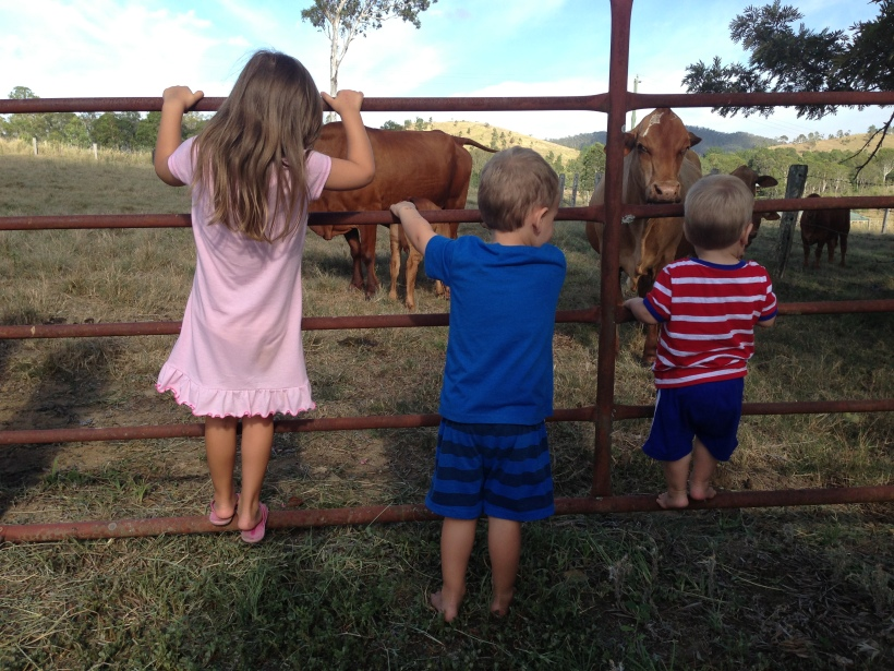 My three angels in their PJ's come to see the cows before breakfast!