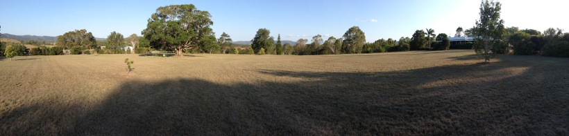 A panoramic view of their land from atop my parents driveway