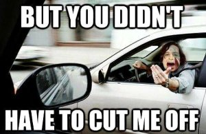 but-you-didnt-have-to-cut-me-off-gotye-in-a-car