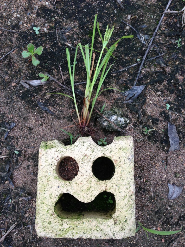 This is brick face, I just added grass and VOILA - doesn't it look amazeballs?!